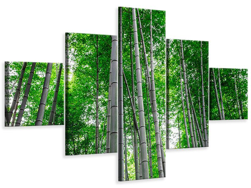 Leinwandbild 5-teilig Bambuswald