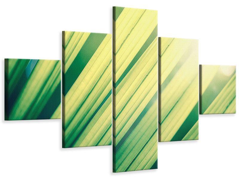 Leinwandbild 5-teilig Beleuchtetes Palmblatt