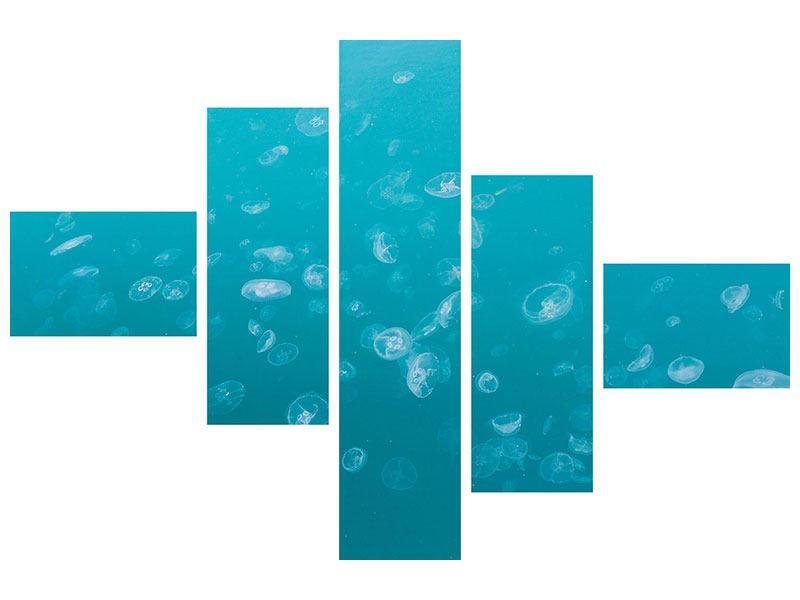 Leinwandbild 5-teilig modern Viele Quallen