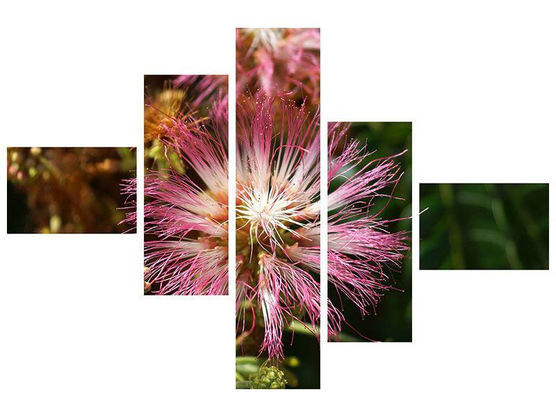 Leinwandbild 5-teilig modern Die Regenbaumblüte