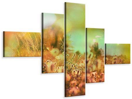 Leinwandbild 5-teilig modern Blumenwiese in der Abenddämmerung
