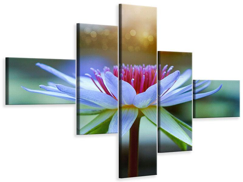Leinwandbild 5-teilig modern Pretty Lotus