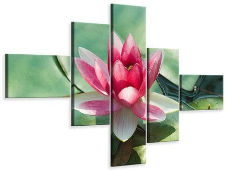 Leinwandbild 5-teilig modern Der Frosch und das Lotusblatt
