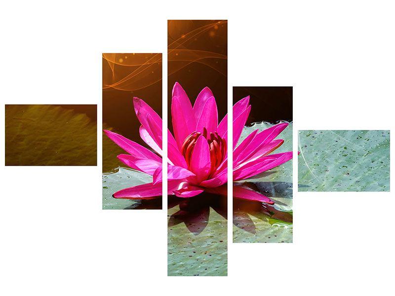 Leinwandbild 5-teilig modern Der Frosch und das Seerosenblatt