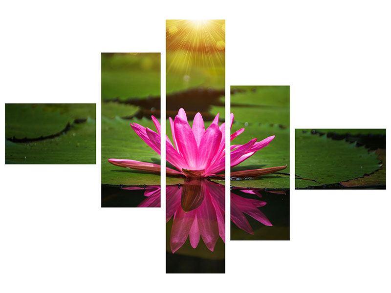 Leinwandbild 5-teilig modern Lilienspiegelung