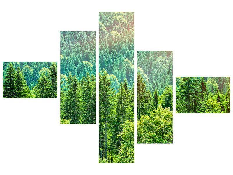 Leinwandbild 5-teilig modern Der Waldhügel