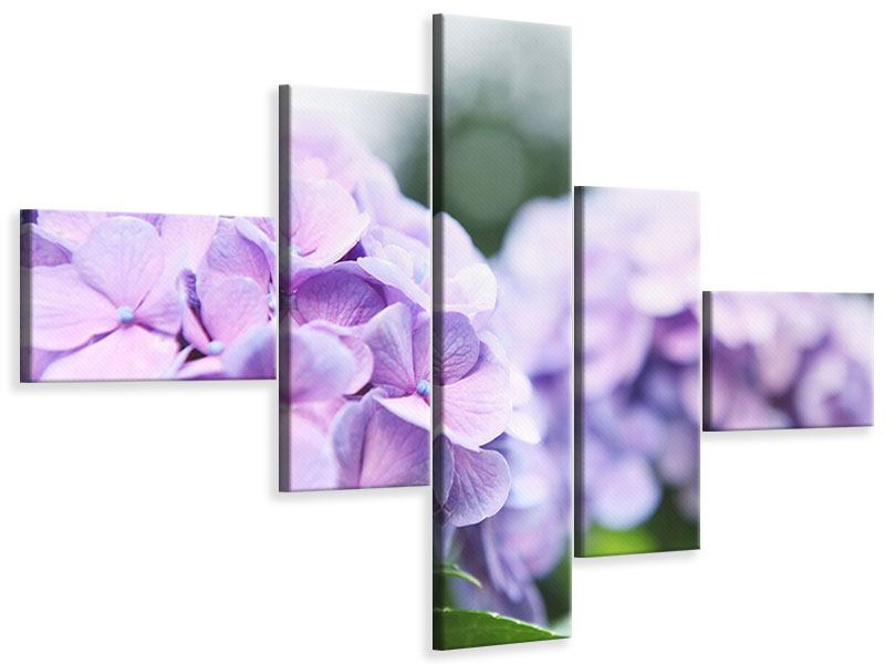 Leinwandbild 5-teilig modern Hortensien