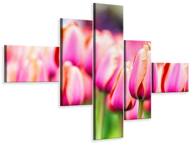Leinwandbild 5-teilig modern Pretty in Pink