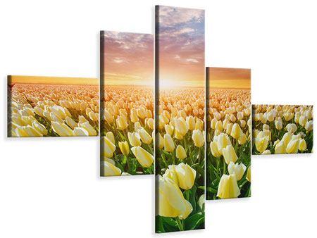 Leinwandbild 5-teilig modern Sonnenaufgang bei den Tulpen