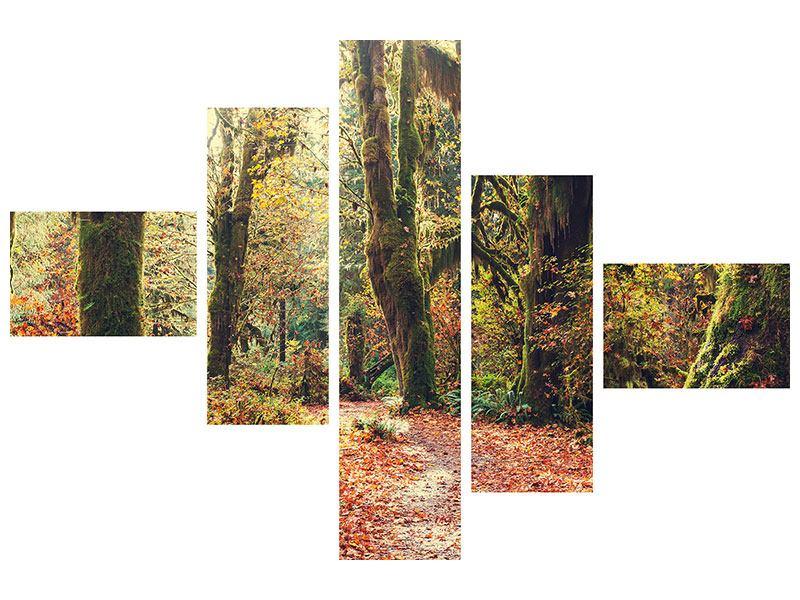 Leinwandbild 5-teilig modern Feenwald
