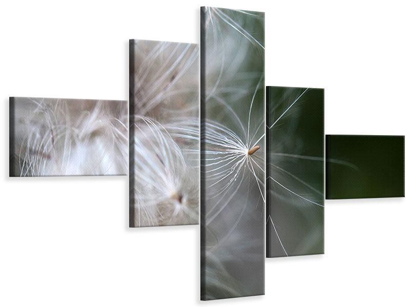 Leinwandbild 5-teilig modern Close up Blütenfasern