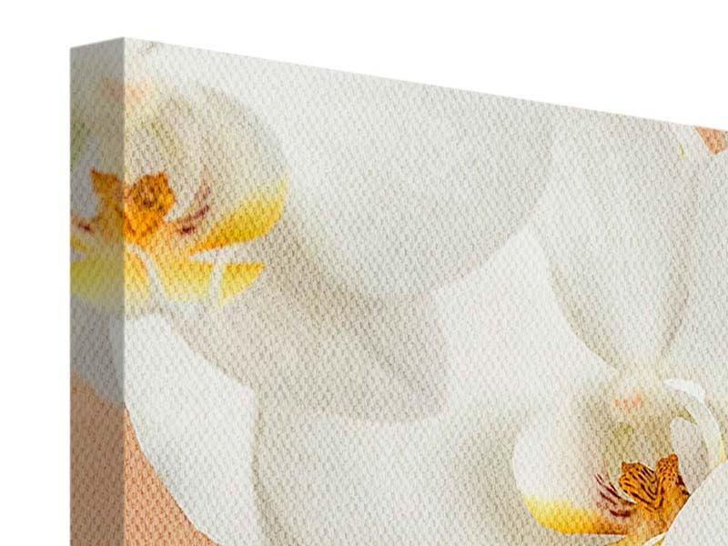 Leinwandbild 5-teilig modern Weisse Orchideenblüten