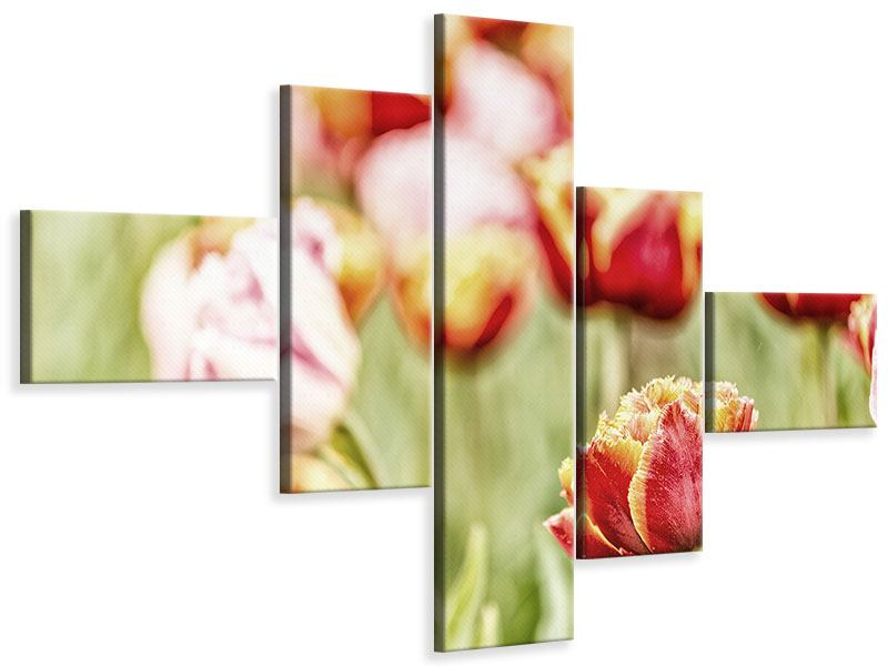 Leinwandbild 5-teilig modern Die Schönheit der Tulpe