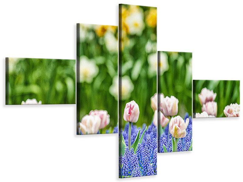 Leinwandbild 5-teilig modern Ein Garten mit Tulpen