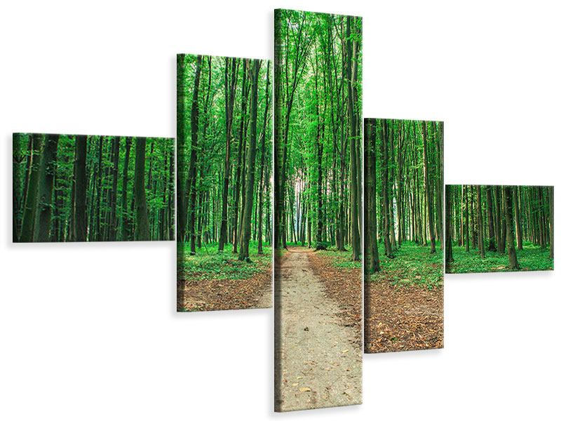 Modern 5 Piece Canvas Print Pine Forests