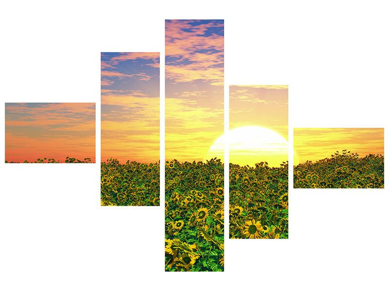 Leinwandbild 5-teilig modern Blumenpanorama bei Sonnenuntergang