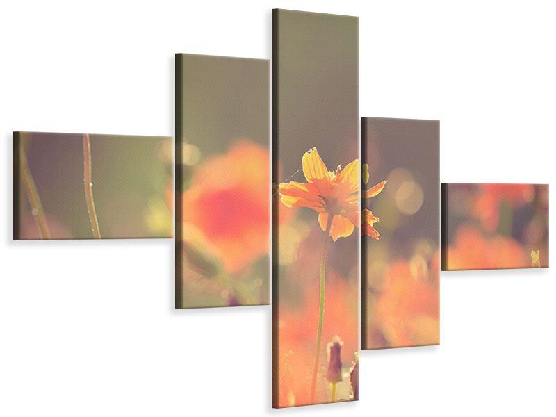 Leinwandbild 5-teilig modern Blütenpracht