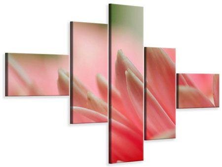 Leinwandbild 5-teilig modern Close Up einer Blüte