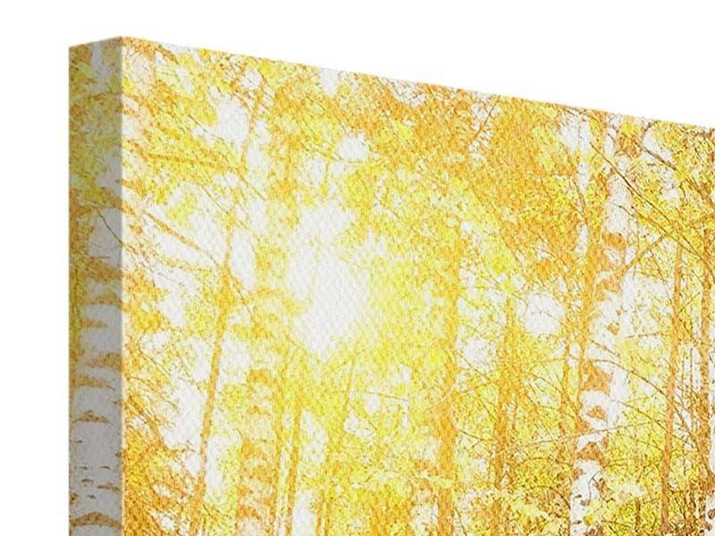 Leinwandbild 5-teilig modern Birkenwald
