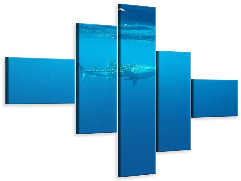 Leinwandbild 5-teilig modern Der Walhai