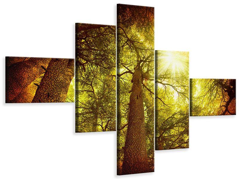 Leinwandbild 5-teilig modern Cedar Baum