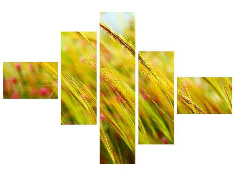 Leinwandbild 5-teilig modern Das Weizenfeld