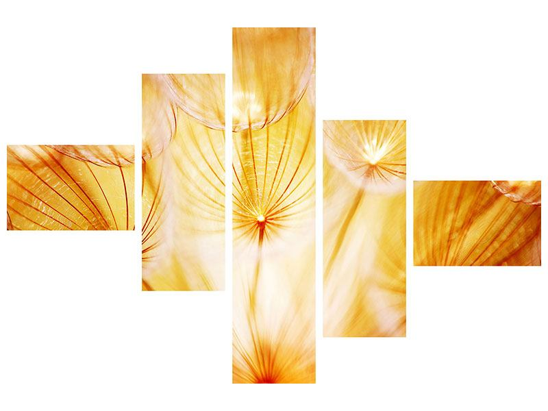 Leinwandbild 5-teilig modern Close Up Pusteblume im Licht