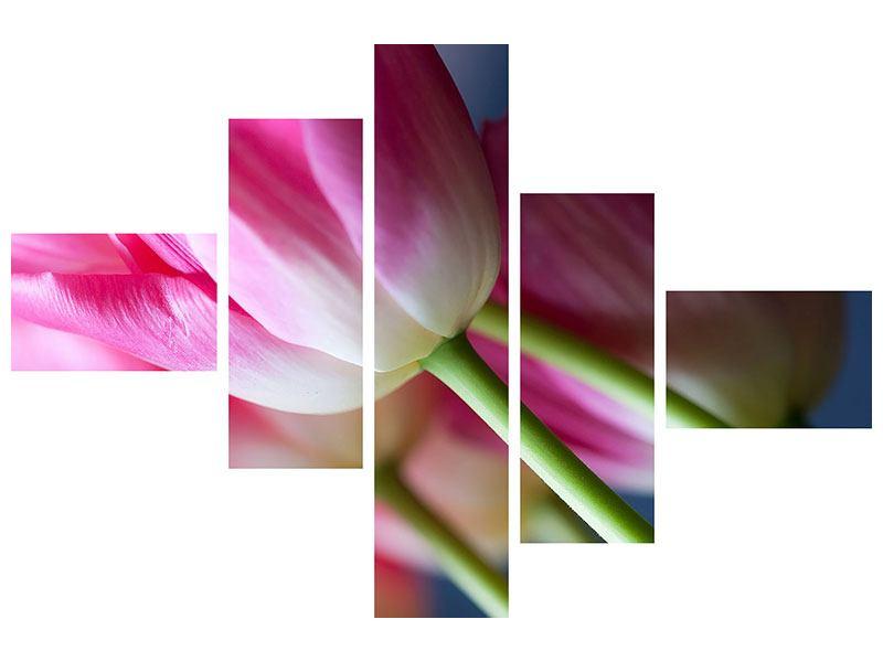 Leinwandbild 5-teilig modern Makro Tulpen