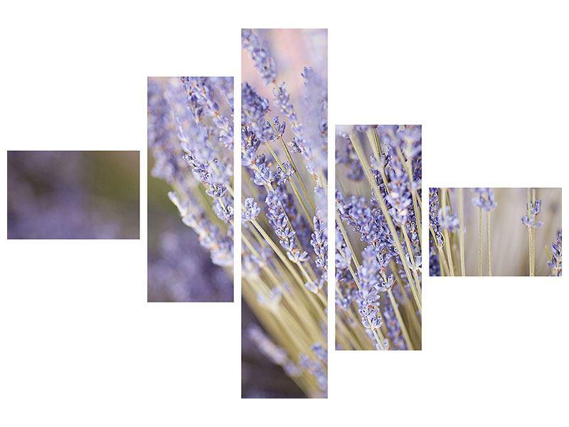 Leinwandbild 5-teilig modern Lavendel XXL