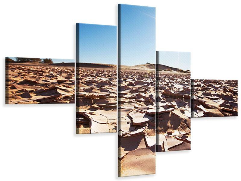 Leinwandbild 5-teilig modern Dürre