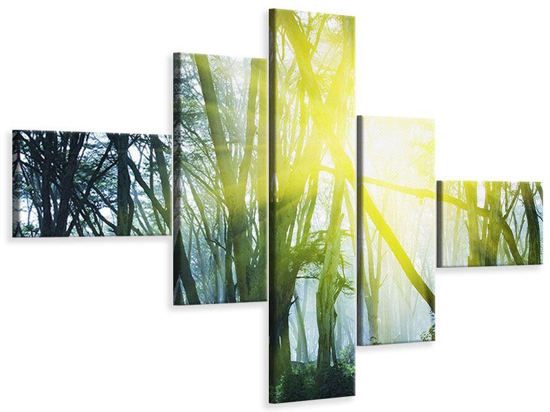 Leinwandbild 5-teilig modern Sonnenstrahlen im Wald