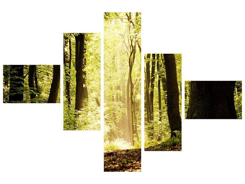 Leinwandbild 5-teilig modern Sonnenaufgang im Wald