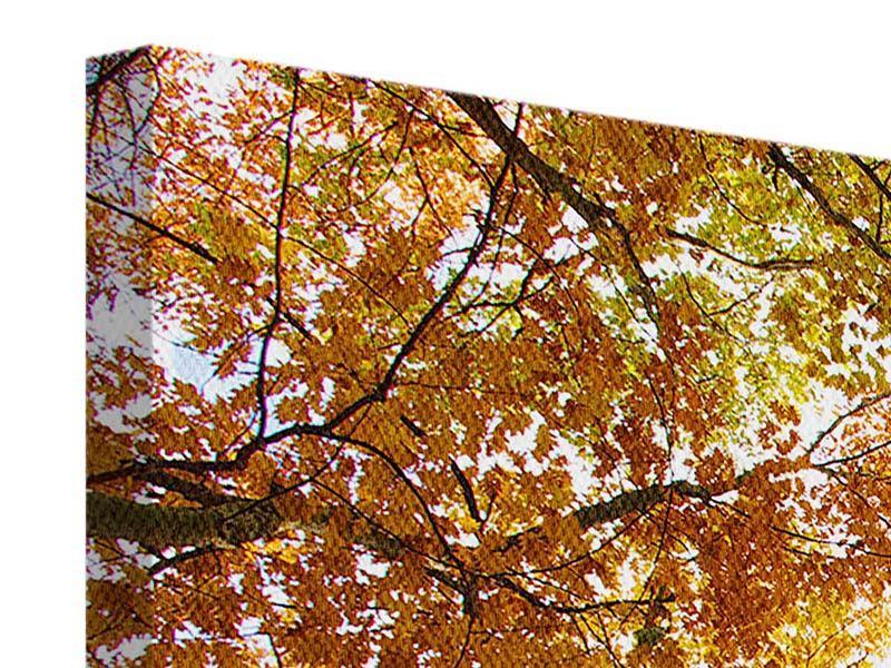 Leinwandbild 5-teilig modern Herbstbäume