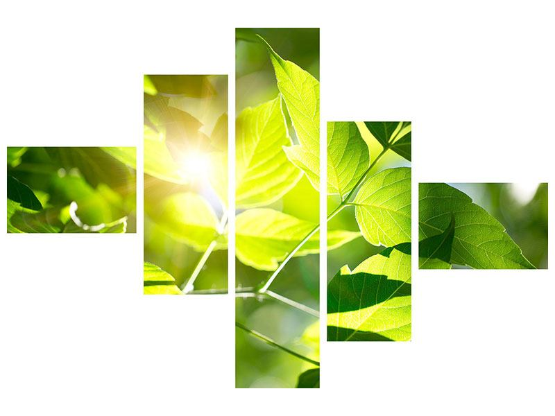 Leinwandbild 5-teilig modern Es grünt so grün