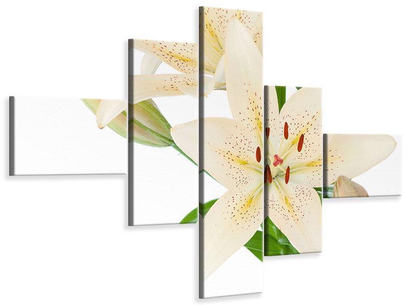 Leinwandbild 5-teilig modern Weisser Lilienstrauch