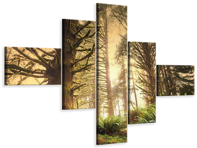 Leinwandbild 5-teilig modern Sonnenuntergang im Dschungel