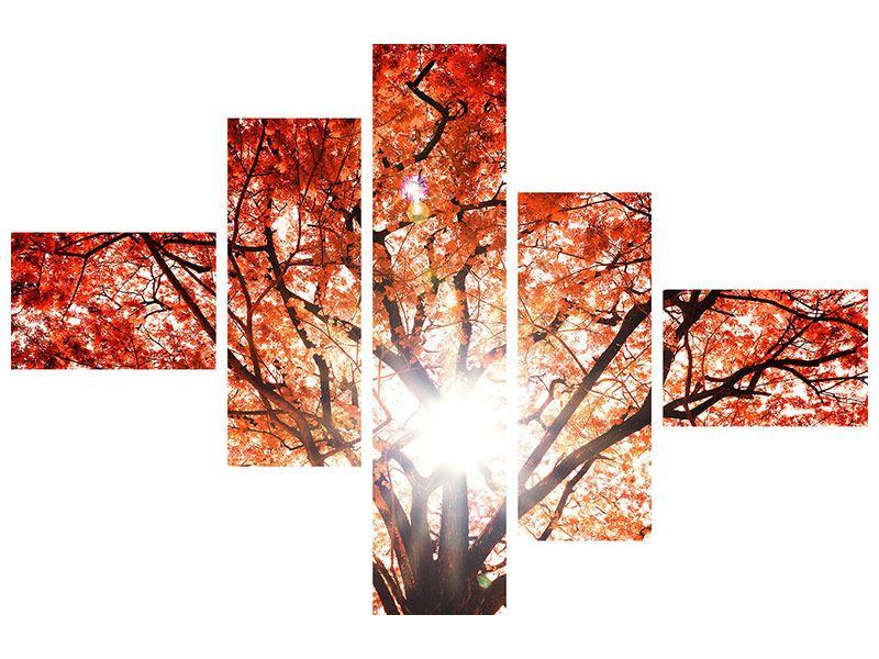 Leinwandbild 5-teilig modern Herbstlicht