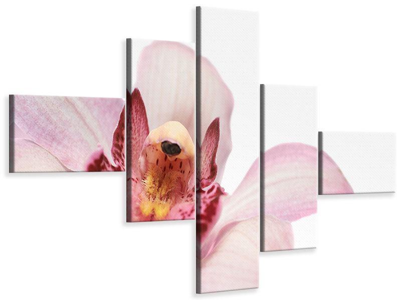 Leinwandbild 5-teilig modern Orchideenblüte XXL