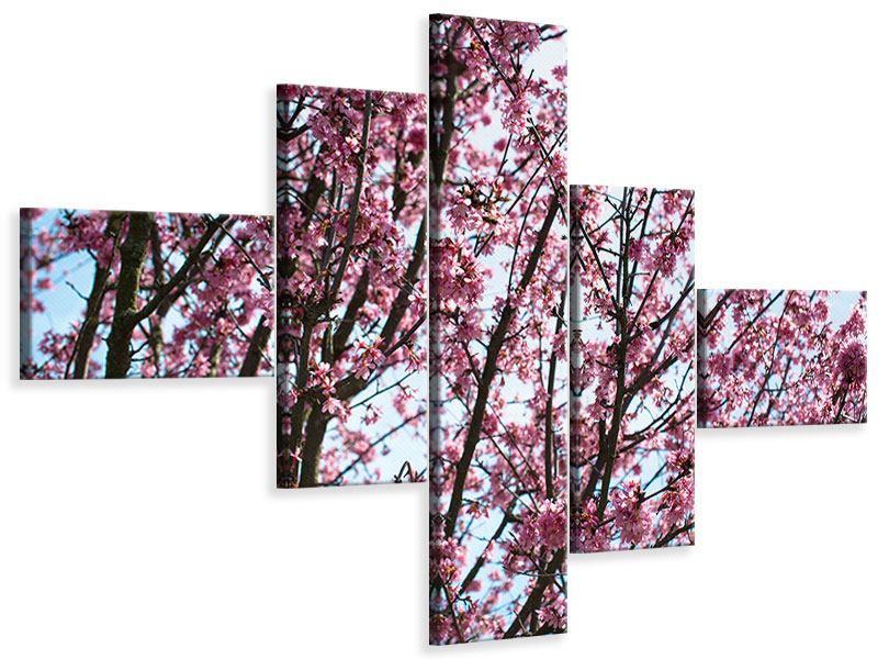 Leinwandbild 5-teilig modern Japanische Blütenkirsche