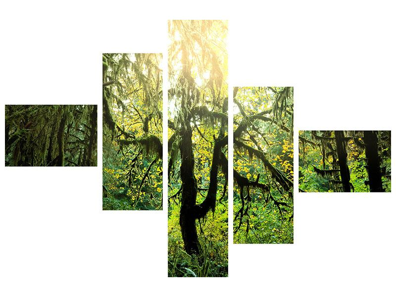 Leinwandbild 5-teilig modern Verträumter Wald