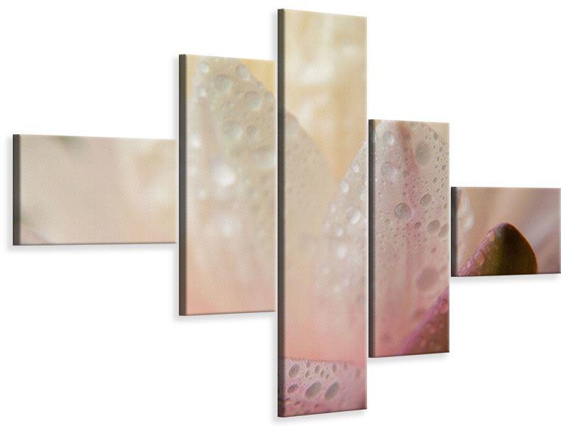 Leinwandbild 5-teilig modern Close Up Seerose