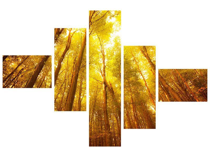 Leinwandbild 5-teilig modern Herbstwald