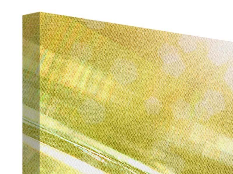 Leinwandbild 5-teilig modern Marienkäfer im Sonnenlicht