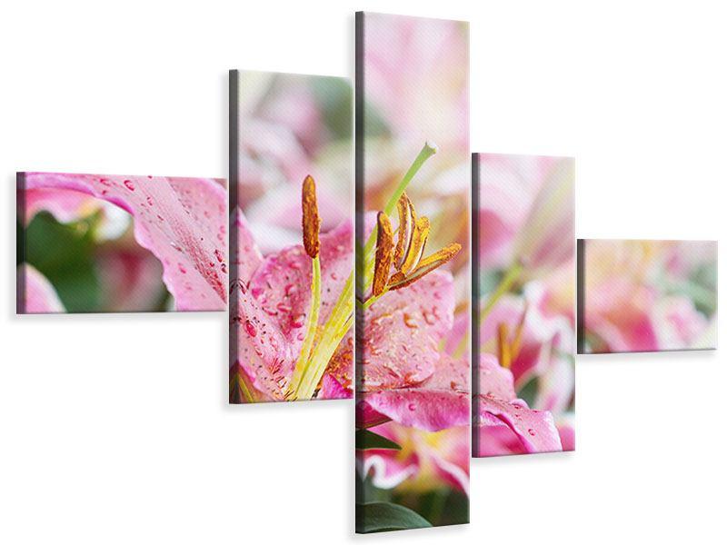 Leinwandbild 5-teilig modern Lilien im Tau
