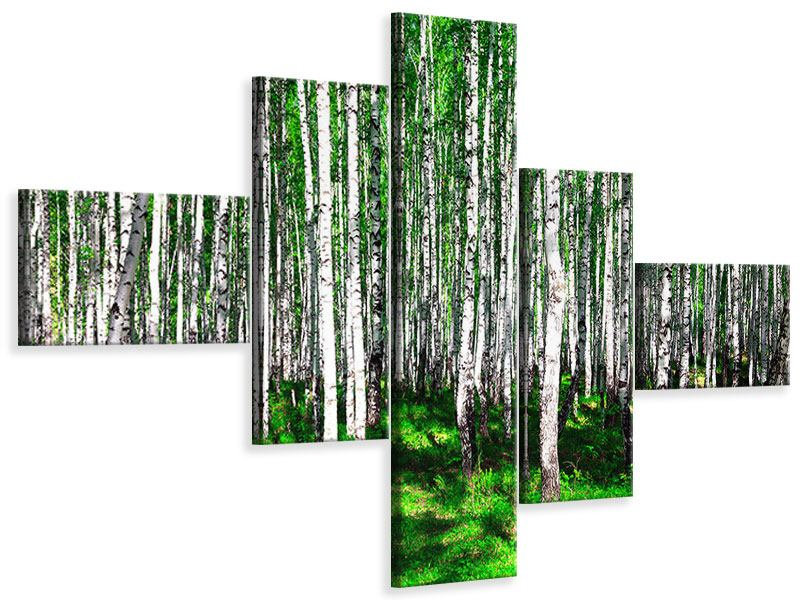 Leinwandbild 5-teilig modern Sommerlicher Birkenwald