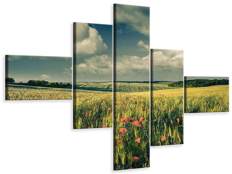 Leinwandbild 5-teilig modern Der Mohn im Weizenfeld