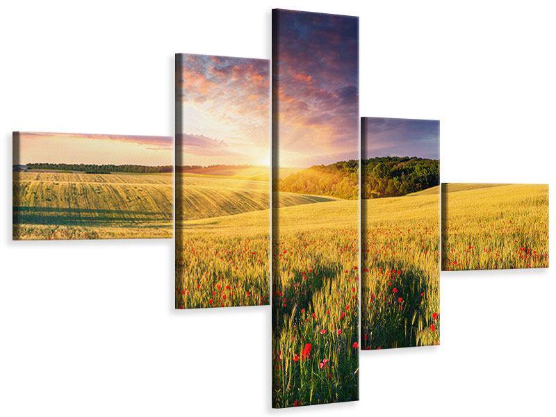 Leinwandbild 5-teilig modern Ein Blumenfeld bei Sonnenaufgang