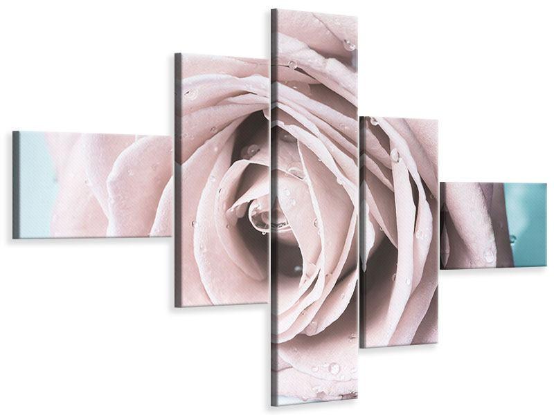 Leinwandbild 5-teilig modern Pastellrose