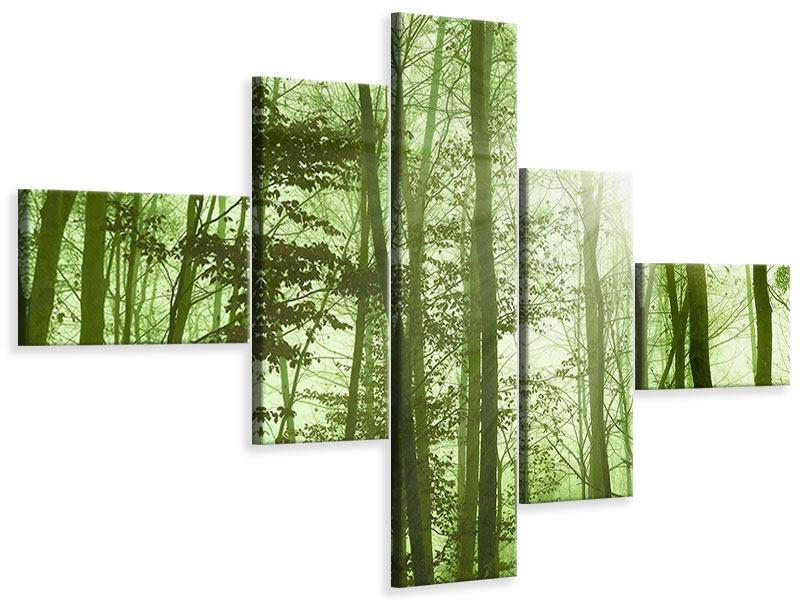 Leinwandbild 5-teilig modern Nibelungenwald