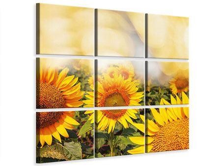 Leinwandbild 9-teilig Das Licht der Sonnenblumen